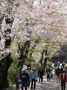富士市百歩の会